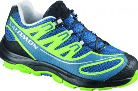 Salomon shoe